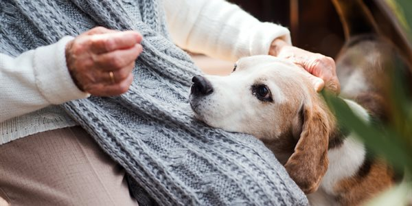 Pets and Senior Living